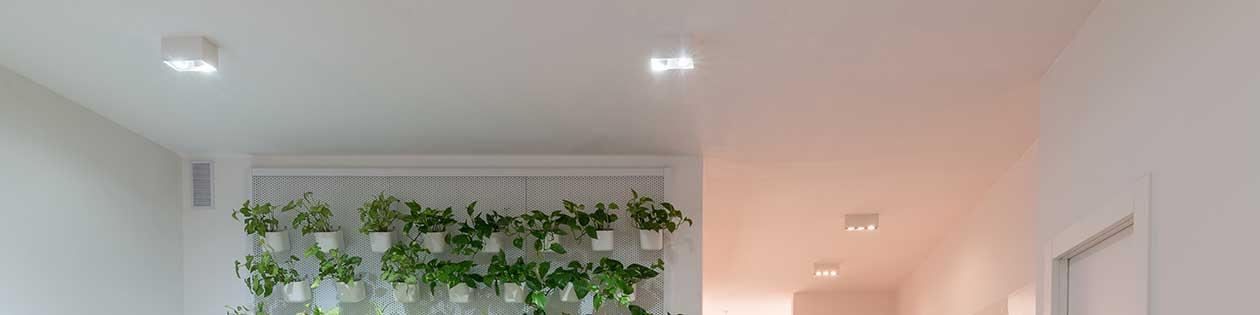 Chors Ceiling Lights