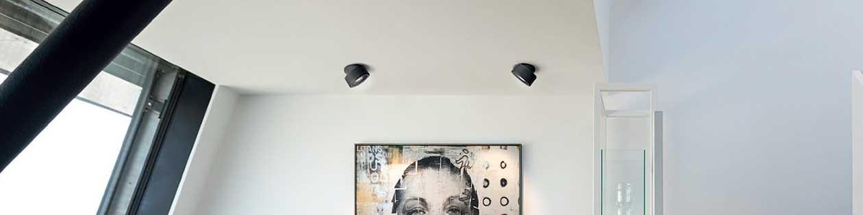 Spotlights Gallery