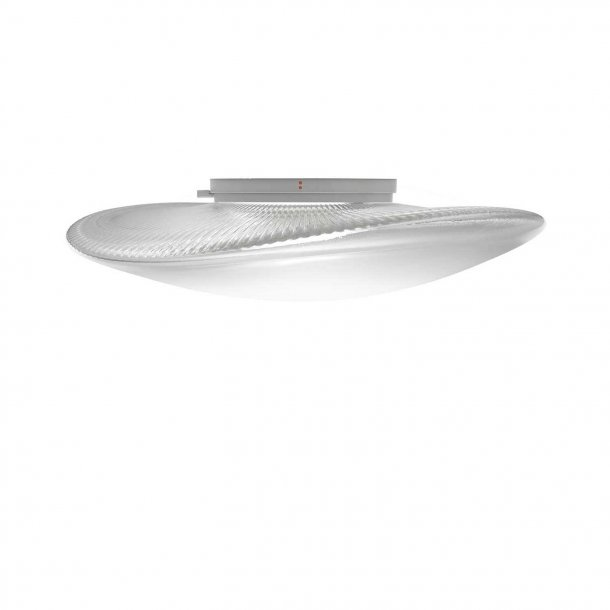 Loop Wall Light/Ceiling Light