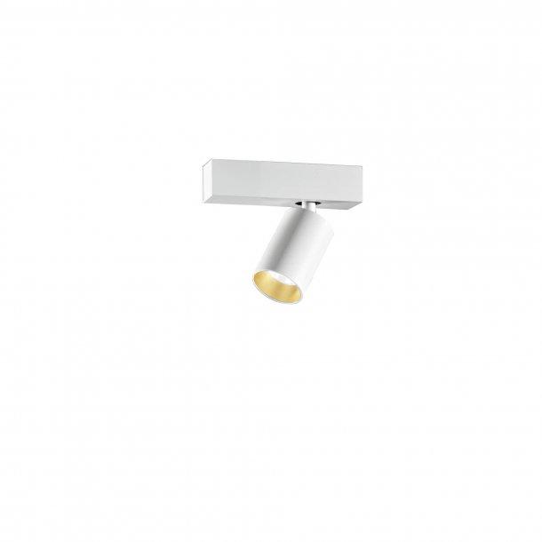 Saturno 1 Loftspot