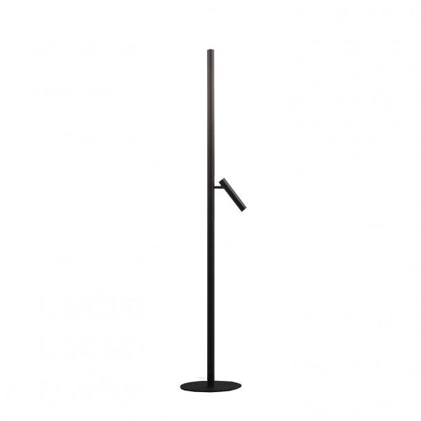 Backlight + RW Floor Lamp